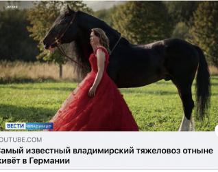 Bericht über Guk im russischen Fernsehen